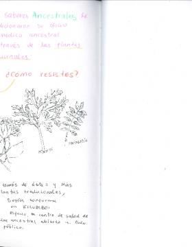 Screenshot_2020-05-03 Sofía pdf(9)